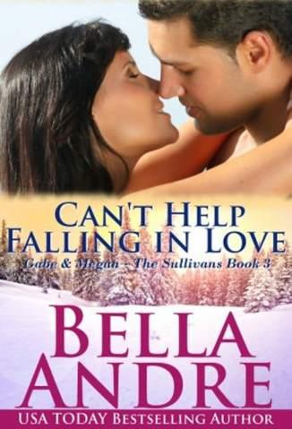 Baixar Impossível Não Se Apaixonar - Os Sullivans Vol. 3 - Bella Andre ePub PDF Mobi ou Ler Online