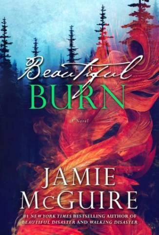 Baixar Beautiful Burn - Maddox Brothers Vol. 4 - Jamie McGuire ePub PDF Mobi ou Ler Online