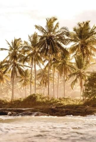 Baixar Livro A Ilha - Joyce Martins em ePub PDF Mobi ou Ler Online